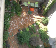 Aerial view of garden at 1911 S. Racine Avenue